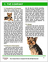 0000072722 Word Templates - Page 3