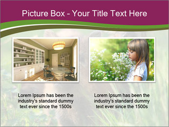 0000072724 PowerPoint Template - Slide 18