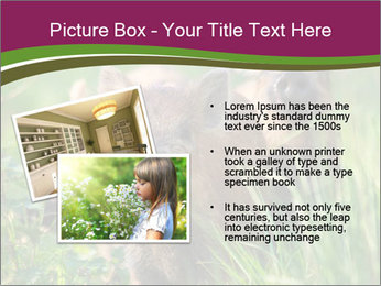 0000072724 PowerPoint Template - Slide 20