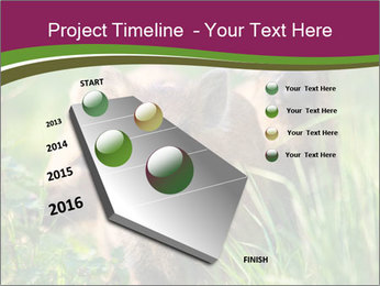 0000072724 PowerPoint Template - Slide 26