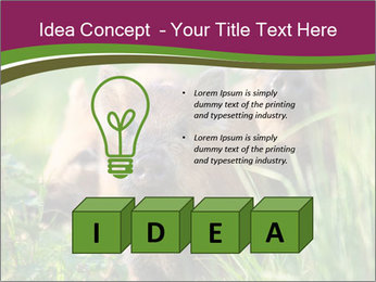 0000072724 PowerPoint Template - Slide 80