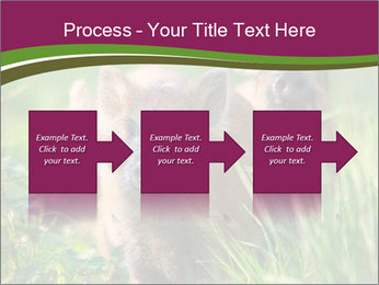 0000072724 PowerPoint Template - Slide 88