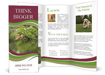 0000072731 Brochure Templates