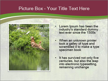 0000072731 PowerPoint Template - Slide 13