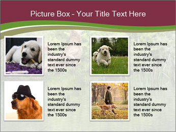 0000072731 PowerPoint Template - Slide 14