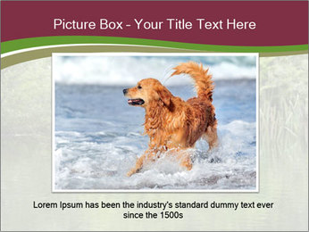 0000072731 PowerPoint Template - Slide 15