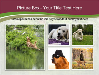 0000072731 PowerPoint Template - Slide 19