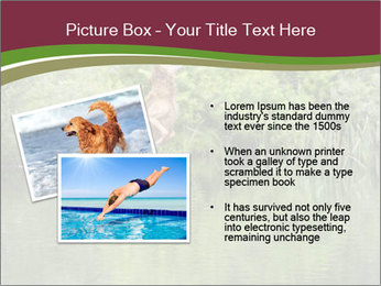 0000072731 PowerPoint Template - Slide 20