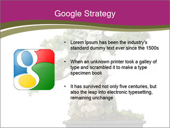 0000072733 PowerPoint Template - Slide 10