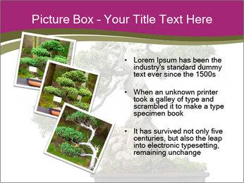 0000072733 PowerPoint Template - Slide 17