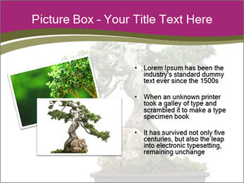 0000072733 PowerPoint Template - Slide 20