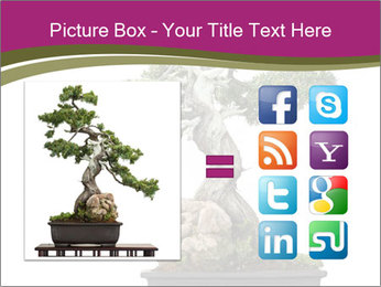 0000072733 PowerPoint Template - Slide 21