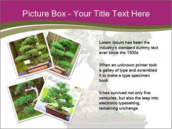 0000072733 PowerPoint Template - Slide 23