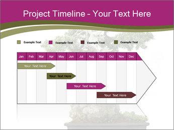 0000072733 PowerPoint Template - Slide 25
