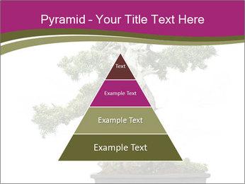 0000072733 PowerPoint Template - Slide 30