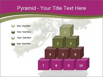 0000072733 PowerPoint Template - Slide 31