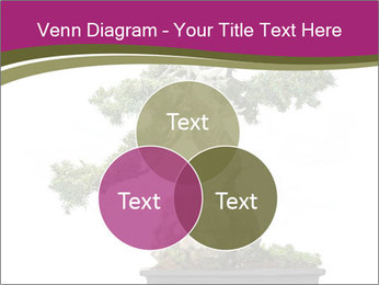 0000072733 PowerPoint Template - Slide 33