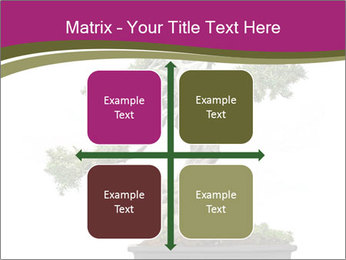 0000072733 PowerPoint Template - Slide 37