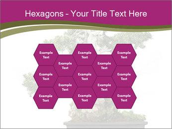 0000072733 PowerPoint Template - Slide 44