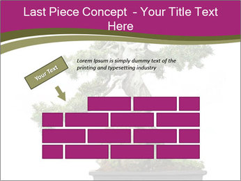 0000072733 PowerPoint Template - Slide 46
