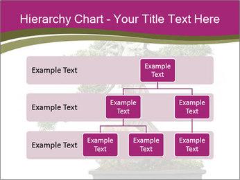 0000072733 PowerPoint Template - Slide 67