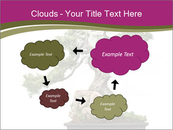 0000072733 PowerPoint Template - Slide 72