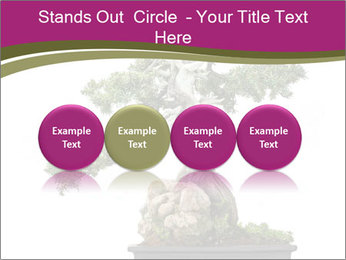 0000072733 PowerPoint Template - Slide 76