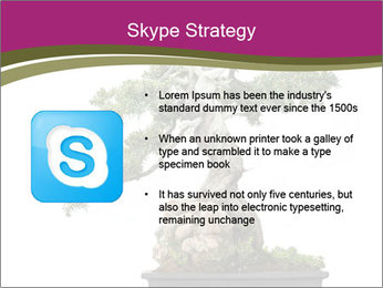 0000072733 PowerPoint Template - Slide 8
