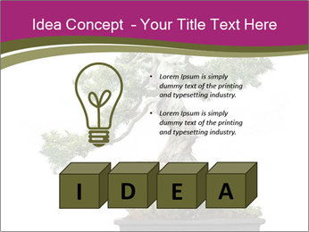 0000072733 PowerPoint Template - Slide 80