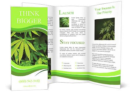 0000072739 Brochure Template