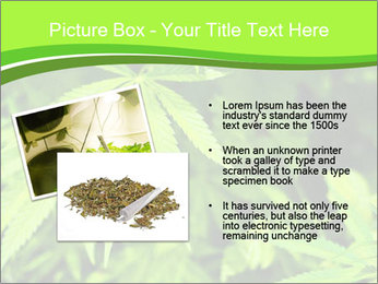 0000072739 PowerPoint Template - Slide 20
