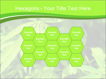 0000072739 PowerPoint Template - Slide 44
