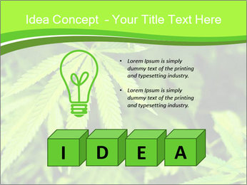 0000072739 PowerPoint Template - Slide 80