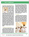 0000072741 Word Templates - Page 3