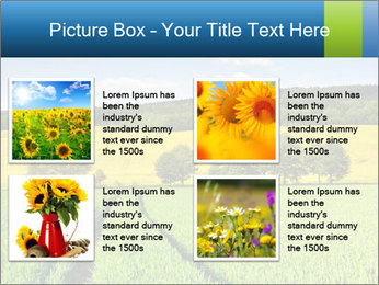 0000072770 PowerPoint Template - Slide 14