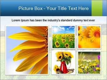 0000072770 PowerPoint Template - Slide 19