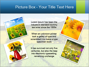 0000072770 PowerPoint Template - Slide 24
