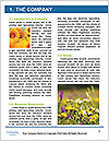 0000072770 Word Template - Page 3
