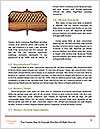 0000072771 Word Templates - Page 4