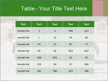 0000072773 PowerPoint Templates - Slide 55