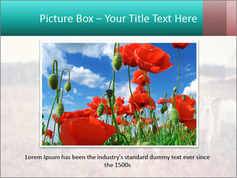 0000072775 PowerPoint Templates - Slide 15