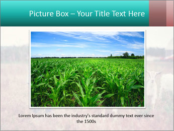 0000072775 PowerPoint Templates - Slide 16