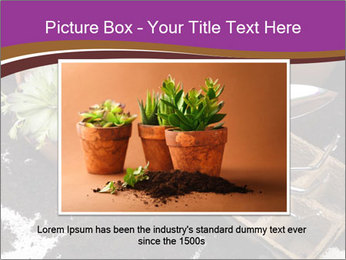 0000072777 PowerPoint Template - Slide 16