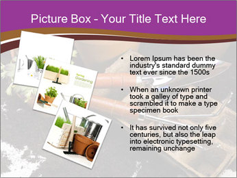 0000072777 PowerPoint Template - Slide 17