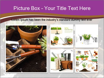 0000072777 PowerPoint Template - Slide 19