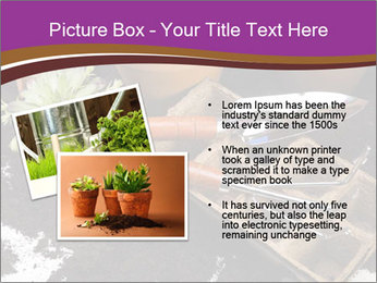 0000072777 PowerPoint Template - Slide 20