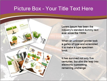 0000072777 PowerPoint Template - Slide 23