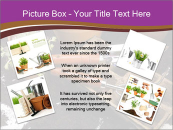 0000072777 PowerPoint Template - Slide 24