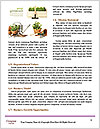 0000072777 Word Template - Page 4
