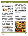 0000072781 Word Template - Page 3